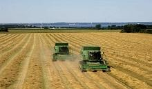 Europe experiences another below-average harvest of grasses and clovers
